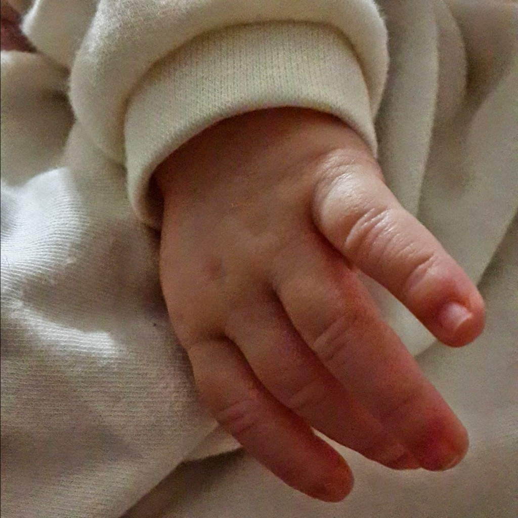 bebek-elleri