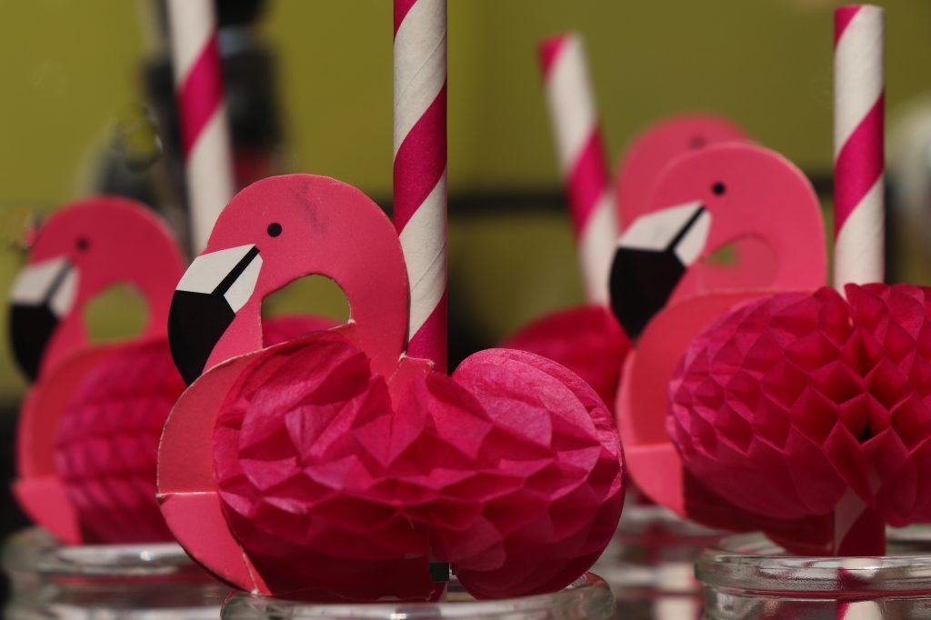 flamingo temalı parti
